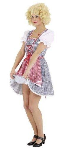Dirndl blau-rot : Kleid und Schürze - 1