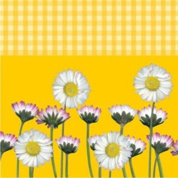 "Servietten: Party-Servietten ""Daisy Yellow"", 33 x 33 cm, 20 Stück - 1"