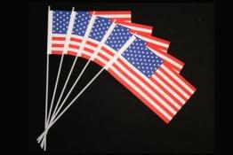 USA-Fahne: Papierfähnchen, 50er-Pack - 1